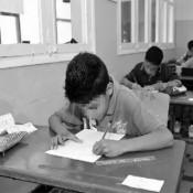 Les cycles d'enseignements en école primaire et collège